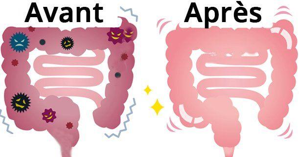 Voici comment dégonfler votre ventre et nettoyer le colon