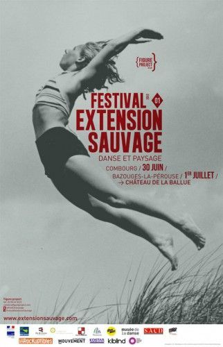affiche-festival extension sauvage: