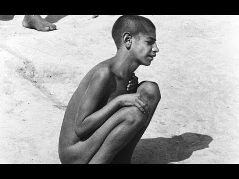 Os horrores de Barbacena : Holocausto Brasileiro.