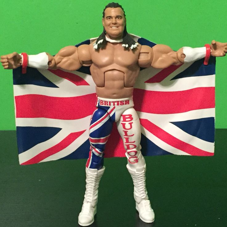 Wwe Toys For Boys : Best images about wwe action figures on pinterest aj