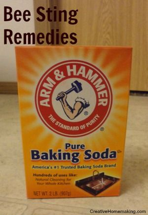 Bee Sting Remedies This Morning Cleaning Tips And To Remove