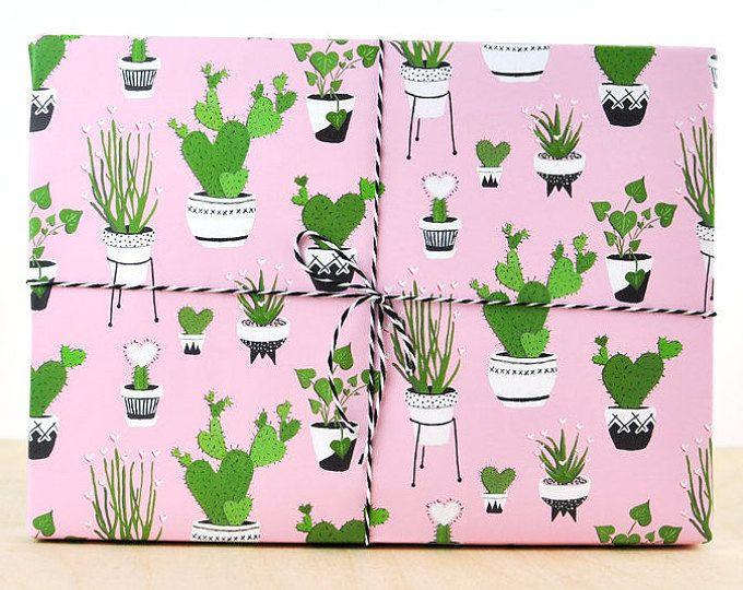Cactus regalo abrigo rosa, papel de regalo, papel de embalaje diseño, mini cactus, cactus de floración, tipos de plantas de cactus, cactus de nopal