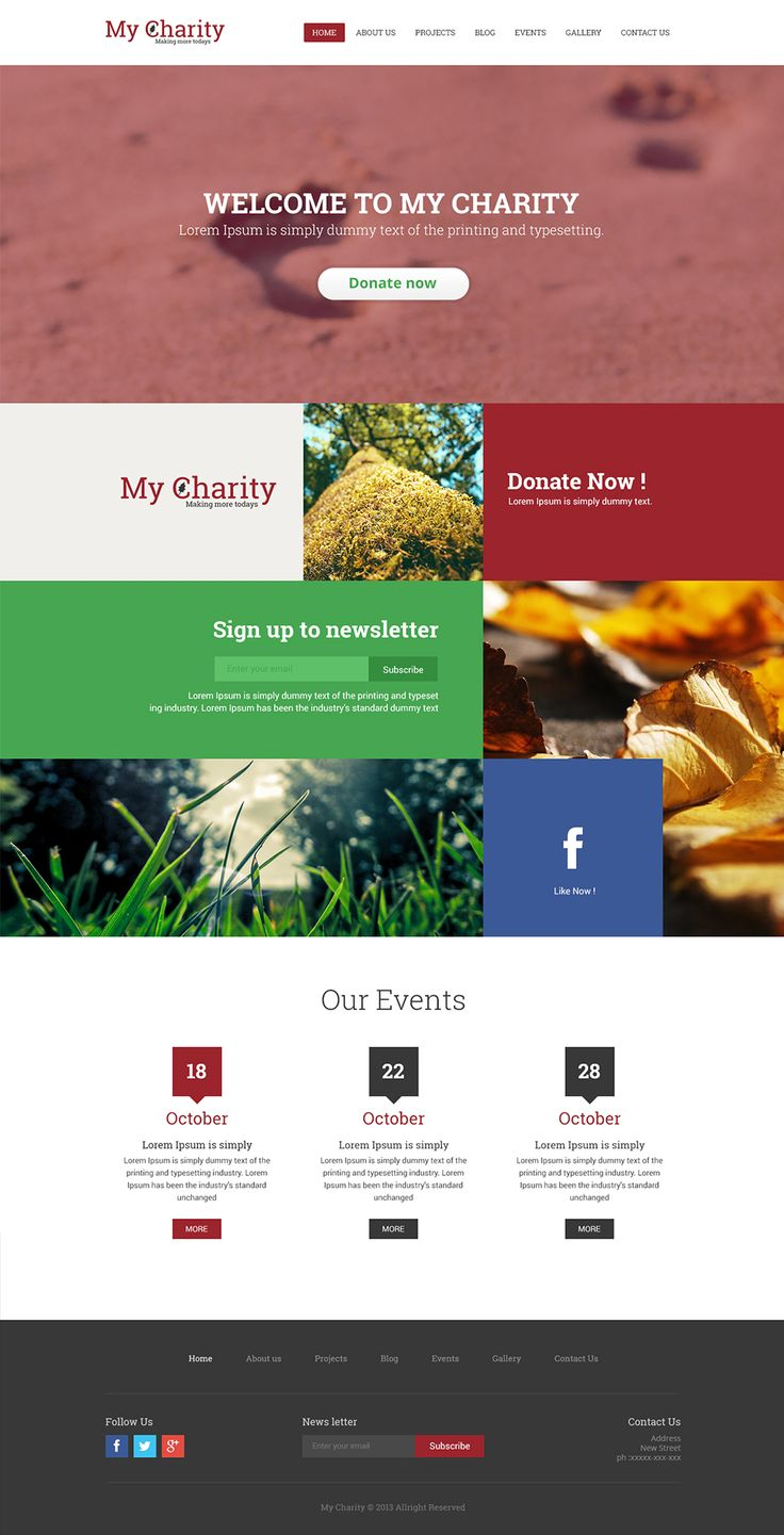Charity Website Template PSD › Free Web Templates » CSS Author