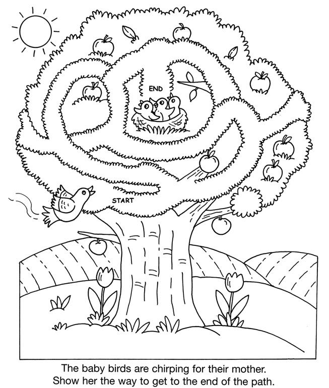 inkspired musings: Robins Nesting