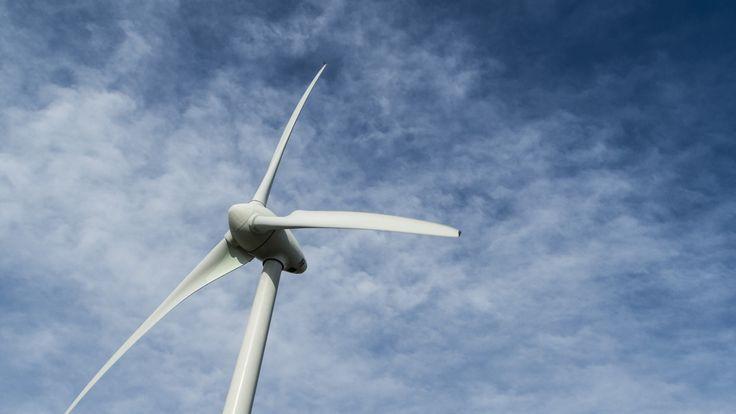 Floating offshore wind turbines spinning near Fukushima
