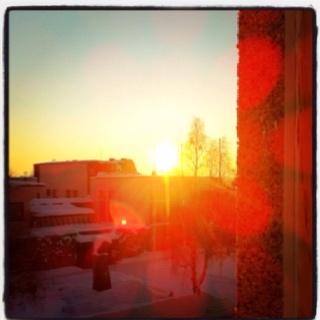 Sunspotting during winter