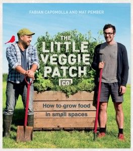 We talked all things vegetable with Matt Pember from The Little Veggie Patch Co.