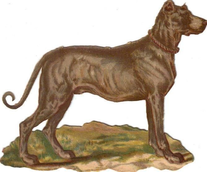 Larger Victorian Die Cut Scrap Gray Dog Curly Tail c1880s: