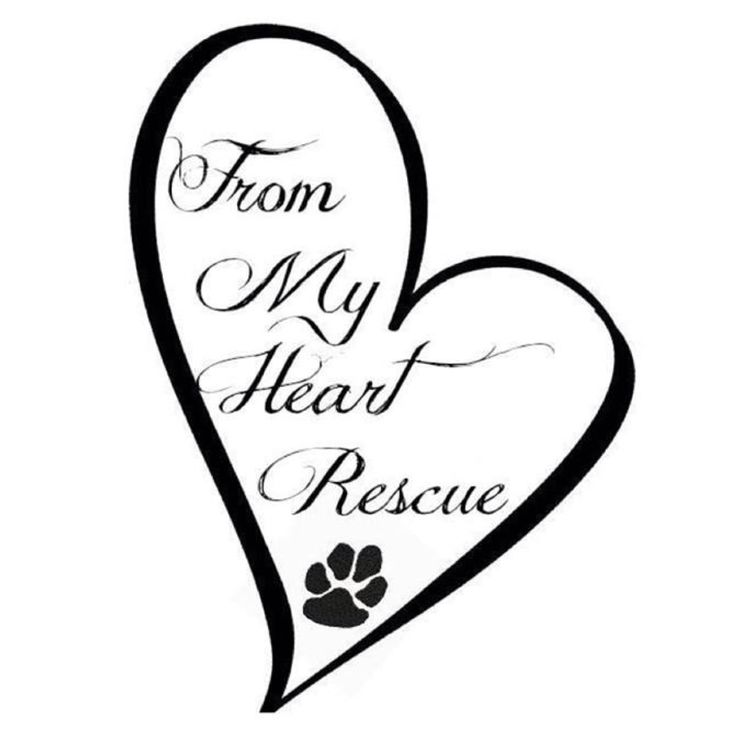 From My Heart Rescue ~ A non-profit organization, run by dedicated volunteers ♥
