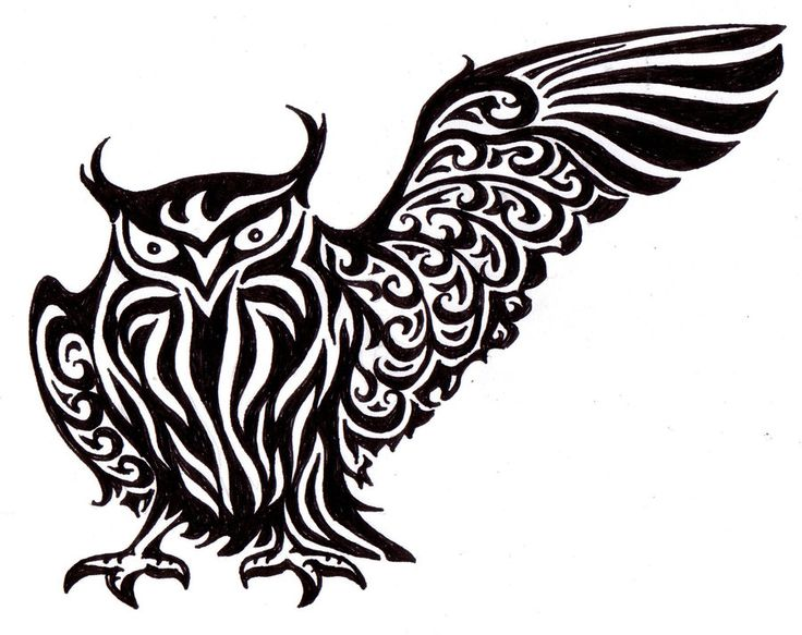 21 best indian tribal owl tattoos images on pinterest tribal owl rh pinterest com Sugar Skull Owl Tattoo Designs free tribal owl tattoo designs