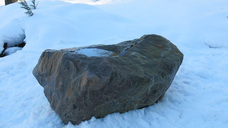 Vesiallas kivi
