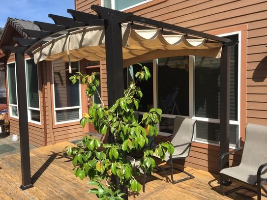 hampton bay 9 ft x 9 ft steel and aluminum arched pergola with retractable canopy home home. Black Bedroom Furniture Sets. Home Design Ideas