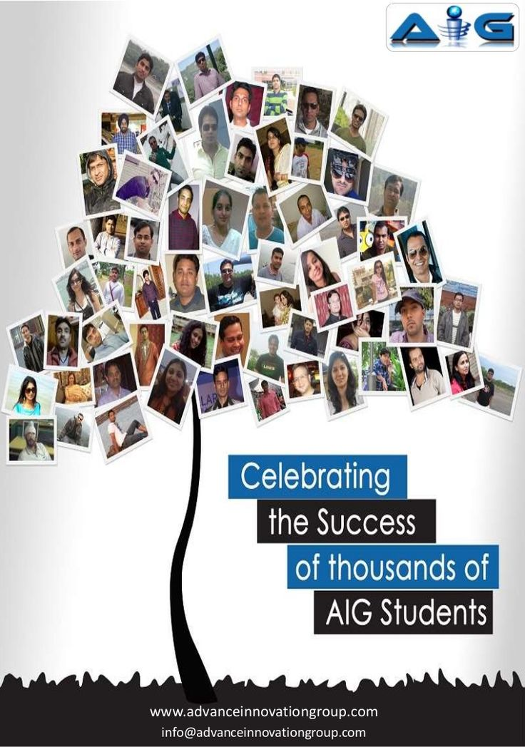 AIG All Training Program and Certification Brochure