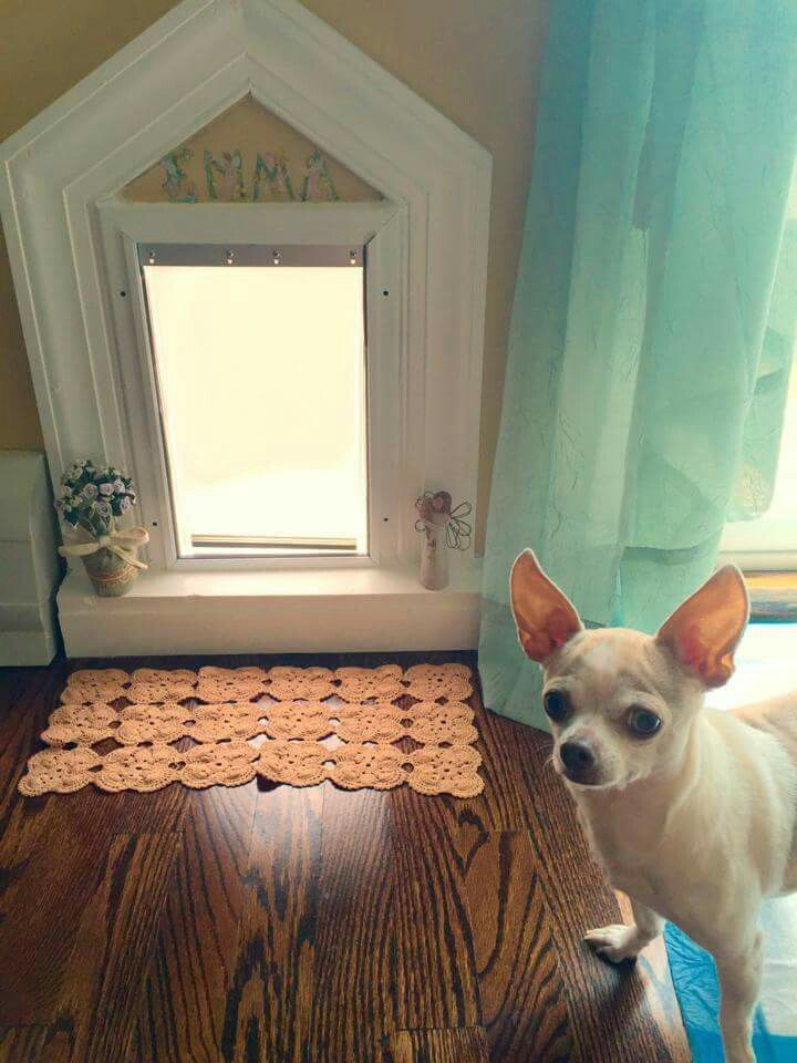 Designer Doggie Door Awful Cute Chihuahua There Chihuahuas