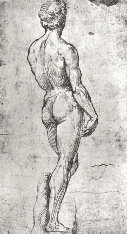 RAPHAEL (Raffaello Sanzio da Urbino) (1483-1520) ~ Study of David after Michelangelo