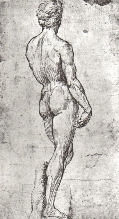 RAPHAEL (Raffaello Sanzio da Urbino) (1483-1520) ~ Study of David after Michelangelo