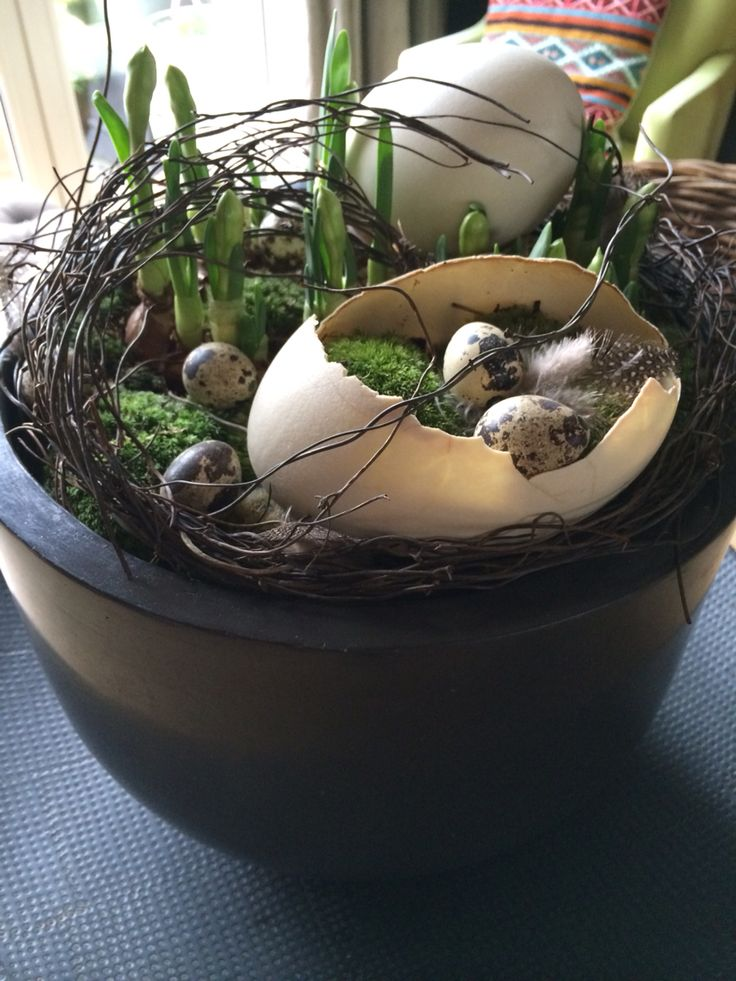 Osterdekoration aus Reisig, Moos, Eiern und Frühlingsblühern.