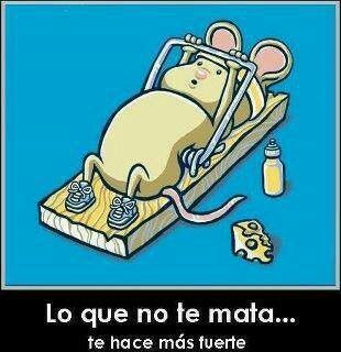 Gym mouse!