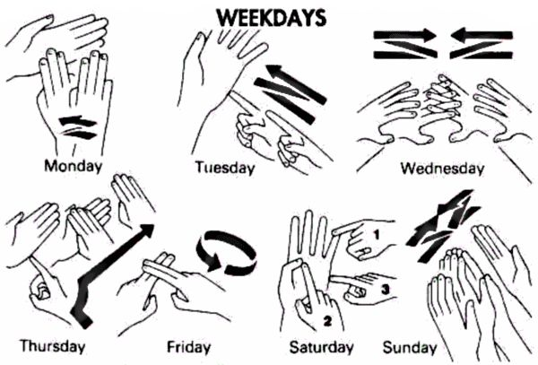 basic sign language - days of the week - we could all learn together!