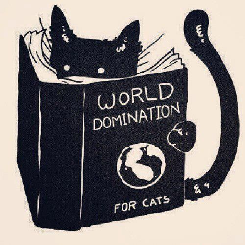 world domination for cats by Tobe Fonseca