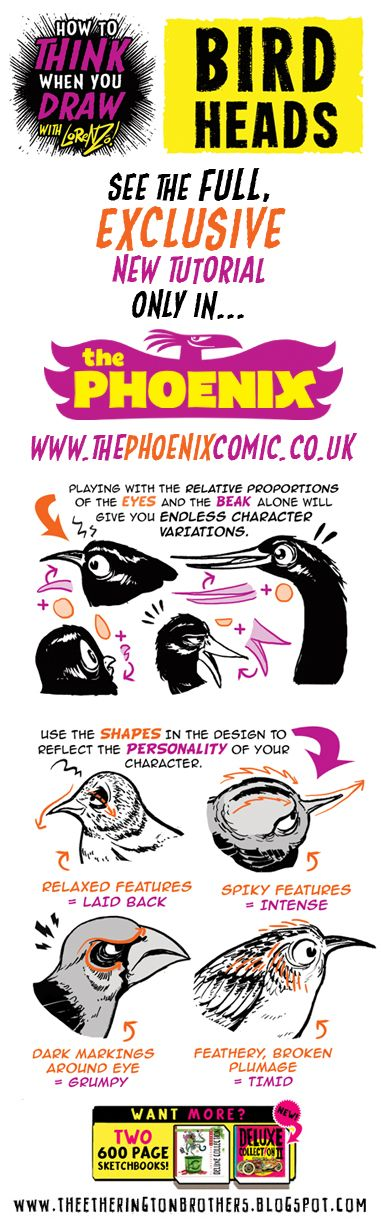 Scroll down for a little taster of my new How to Think when you Draw  BIRD HEADS  tutorial, which you can get exclusively HERE!   And there'...