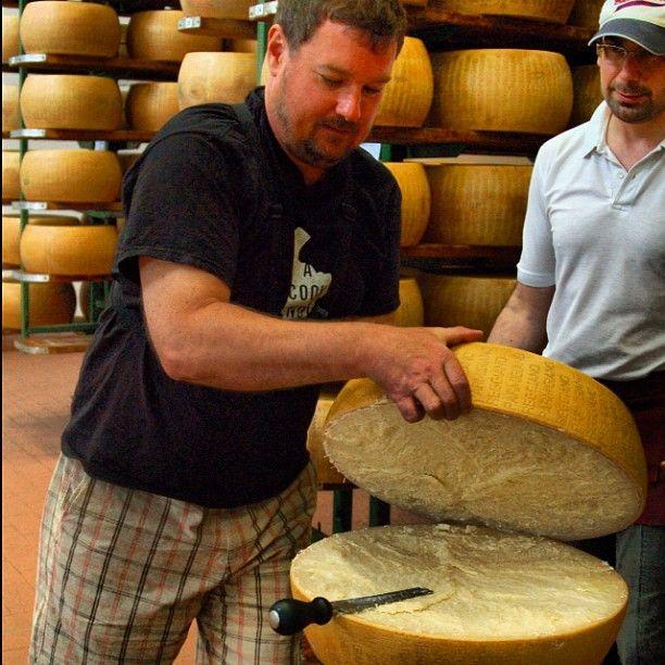 At a Parmigiano producer in Parma - Instagram by @acooknotmad, Parma: Province of Parma , Emilia Romagna region Italy