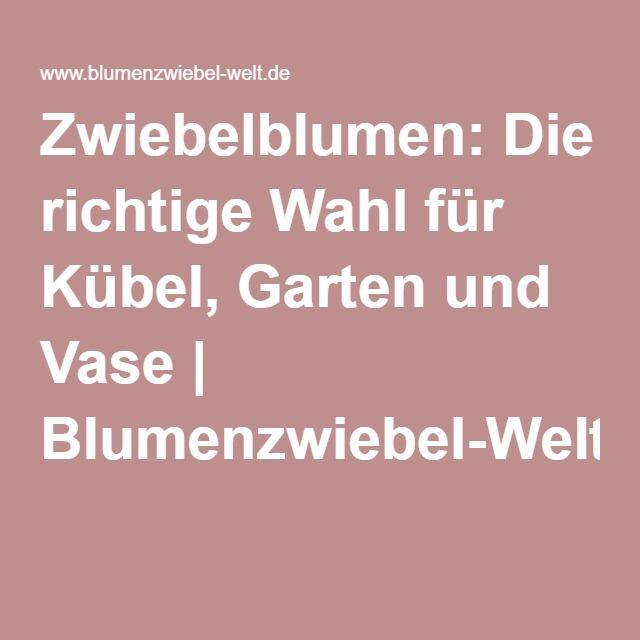 30 best images about blumenzwiebeln von sperli on. Black Bedroom Furniture Sets. Home Design Ideas