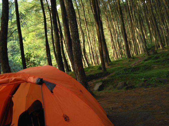 Wisata Di Suaka Elang Loji Bogor Dijamin Seru - Lifestyle / Travel - Forum Liputan6