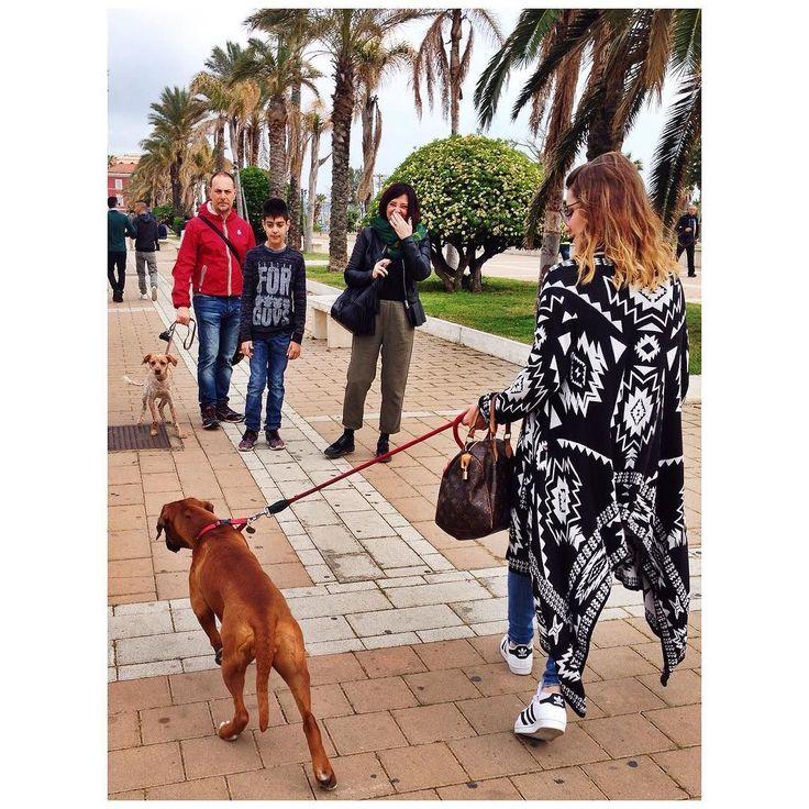Il mio cane come cane è un disastro ma come persona è insostituibile  Johannes Rau #dog #puppy #TagsForLikes #cute #instagood #dogs_of_instagram #pet #pets #animal #animals #petstagram #photooftheday #dogsofinstagram #ilovemydog #instagramdogs #nature #dogstagram #dogoftheday #lovedogs #lovepuppies #adorable #doglover #instapuppy #instadog #Nala #magicNala by cherryloveg