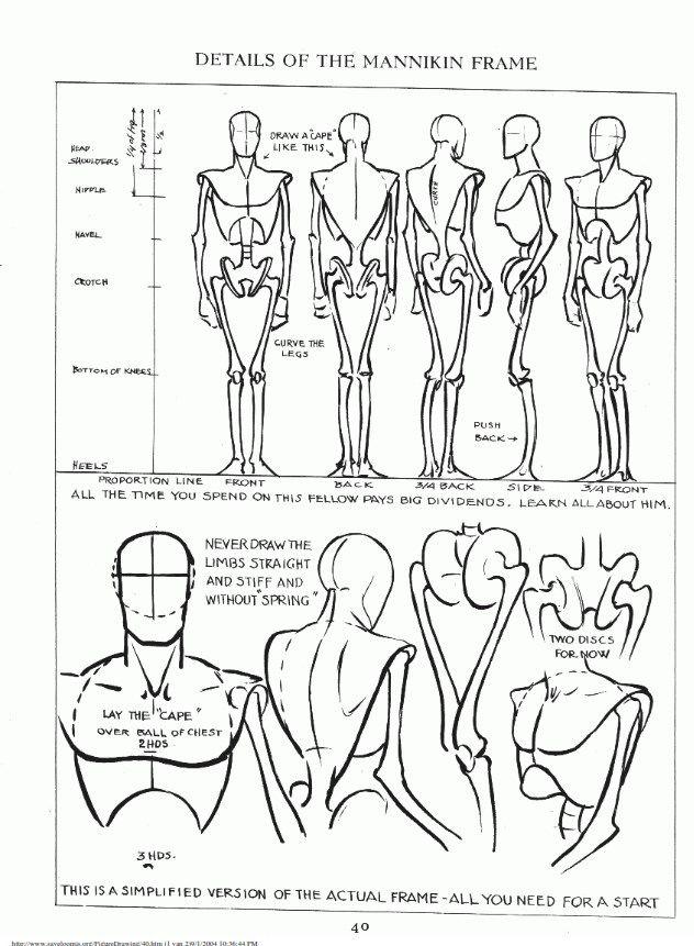 Ungewöhnlich Anatomie Und Physiologie Tutorials Zeitgenössisch ...