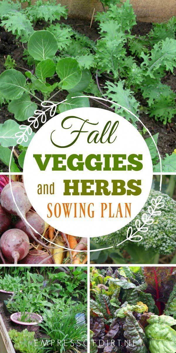 Fall Is The Best Veggie Season Herbs Growing Vegetables