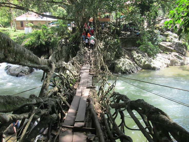 Makin hari makin melebar, hati-hati jika melewati jembatan ini