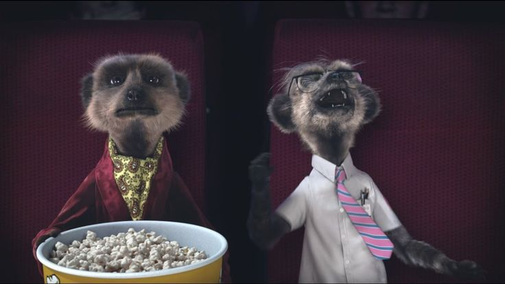 Laughing | MEERKAT MOVIES | Compare the Meerkat I think Sergei is break his funnybone. Do you have friend who laugh like Sergei? #MeerkatMoviesMoments  Movies are better with two. So take a friend to the cinema with 2 for 1 tickets from MEERKAT MOVIES. Any friend. Every week. All year. Only when you buy through comparethemarket.com   http://www.comparethemeerkat.com/movies