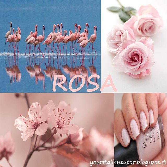 """Oggi impariamo un nuovo colore: """"rosa"""" (pink)  In Italiano ci sono alcune espressioni con queste colore come """"CRONACA ROSA"""" che è usata per indicare la sezione di un giornale o di un programma dedicata al gossip sui personaggi famosi. Un'altra espressione è """"VEDERE ROSA"""" che significa vedere ogni cosa da un punto di vista ottimistico."""