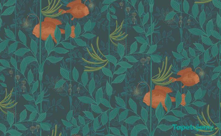 wallpaper fish plants underwater // Tapeta Cole & Son Whimsical 103 4019 Nautilus - Whimsical - Cole & Son - Tapety dekoracyjne (517 PLN)