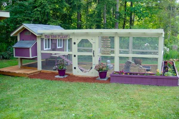 "Awesome purple ""Daisy"" chicken coop with run. Notice the Egg Plant sign."