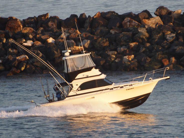 Shotgun Marine Port Macquarie Shotgun sailing out ready to fish.