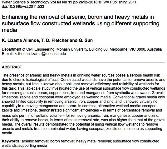 Enhancing the removal of arsenic, boron and heavy metals in subsurface flow constructed wetlands using different supporting media.