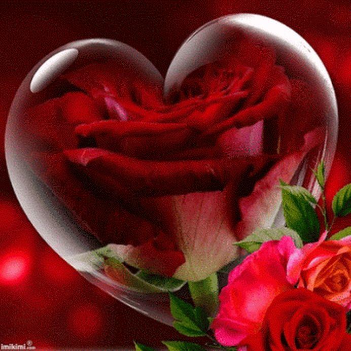 Обьемная, гифы сердца и розы