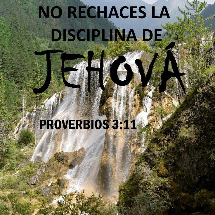 """Estas palabras nose refieren a la disciplina en general, sino a """"la disciplina de Jehová"""", la que se basa en Sus elevados principios. Esta es la única disciplina espiritualmente productiva y provechosa, e incluso deseable. Por otro lado, la que se basa en el pensamiento humano que está en pugna con los elevados principios de Jehová suele ser abusiva y dañina; de ahí que muchos tengan una actitud negativa hacia la disciplina."""