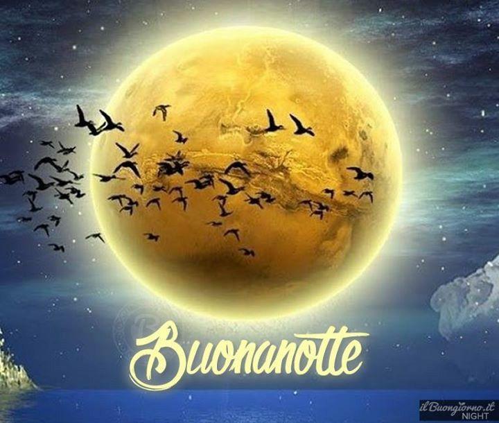 Notte!!
