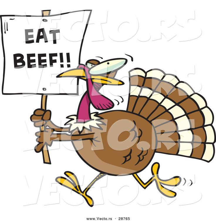 16 best Turkey pics images on Pinterest | Turkey pics ... Funny Cartoon Turkey Wallpaper