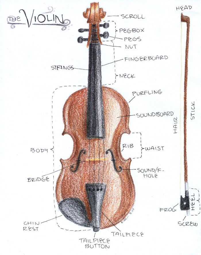 My 9 yr-old is starting to learn violin. Learning the parts of the instrument is her first assignment so I was happy to find this artsy diagram #homeschool #music #drawing