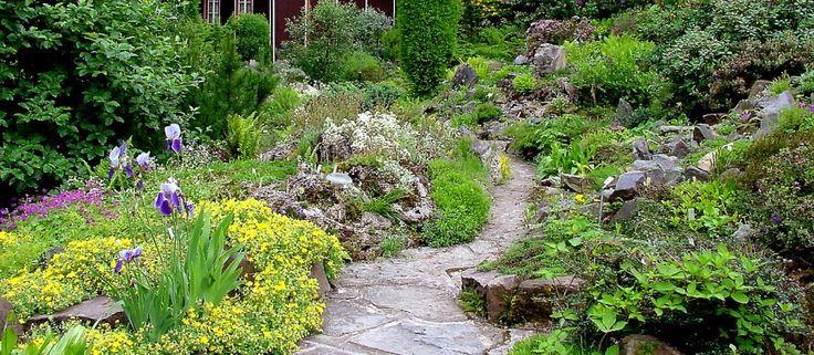 alpiner garten google suche garden diy pinterest suche google und g rten. Black Bedroom Furniture Sets. Home Design Ideas