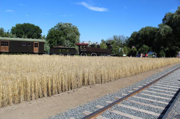 Train aux Mosaicultures du Canada 150 au parc Jacques-Cartier à Gatineau
