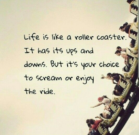 Life is like roller coaster....