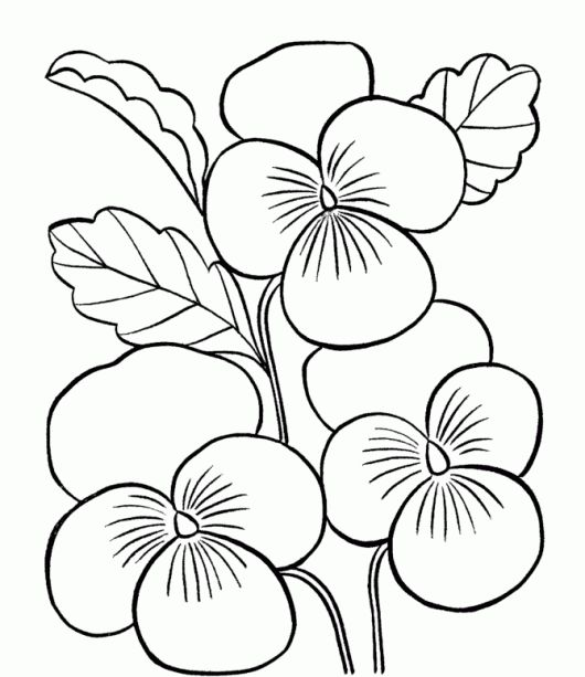 flower page printable coloring sheets flower coloring pages for kids printable free coloring pages - Printable Coloring Pages Kids