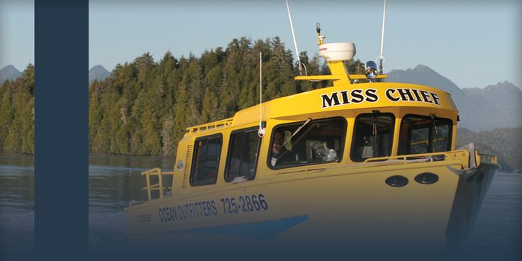 Ocean Outfitters Tours Tofino