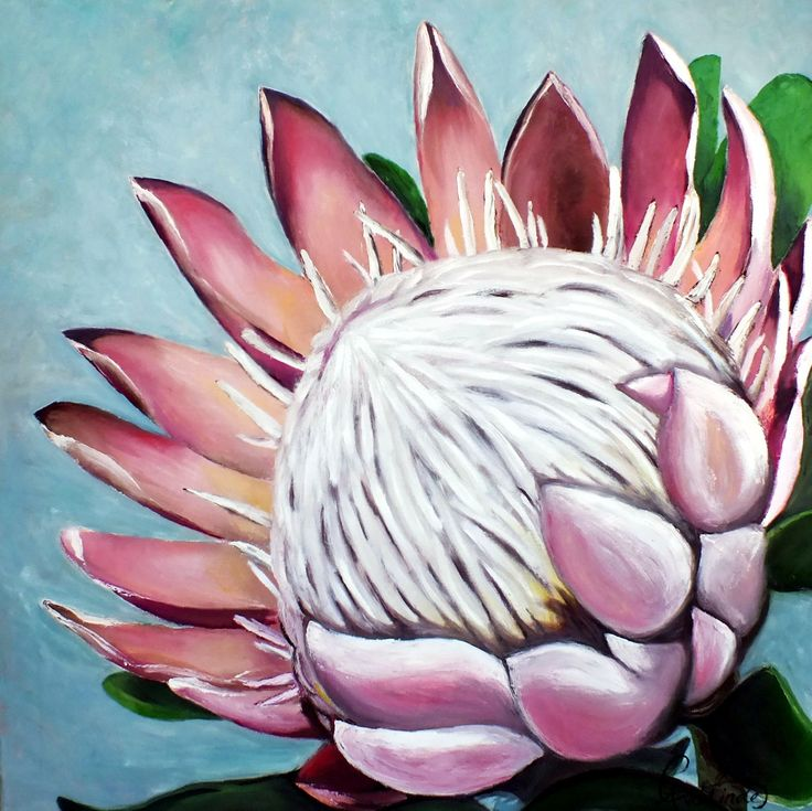 King Protea, Protea art, Protea painting, Oil painting by Carina van der Linde.  1mx1m Pallet knife and brush art.