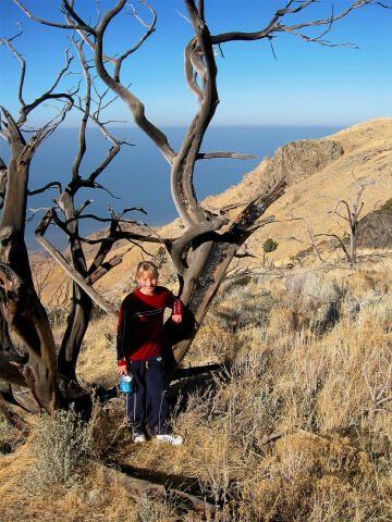 Antelope Island State Park | Utah.com